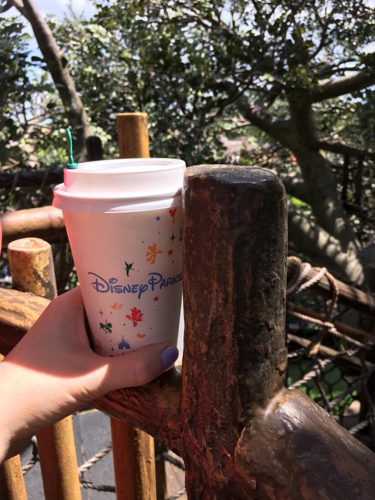 Starbucks Disneyworld