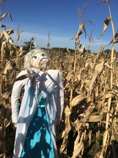 Frozen Princess in a corn maze